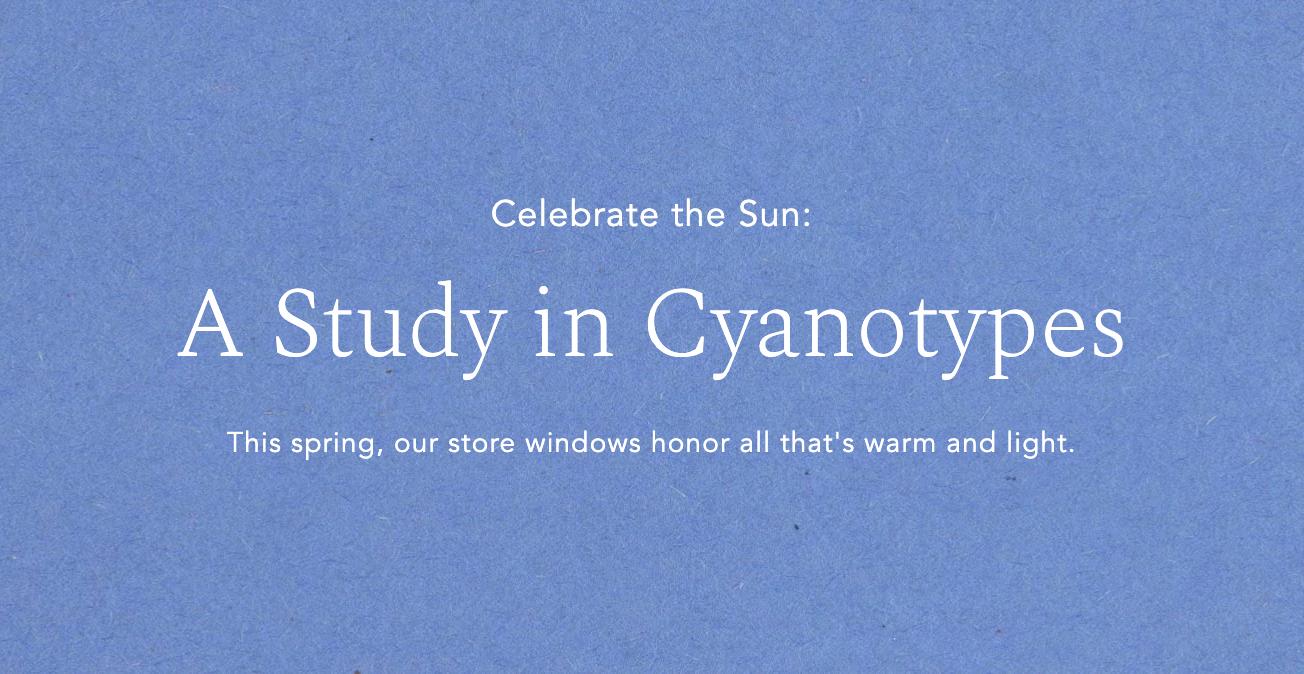 Celebrate the Sun - Banner